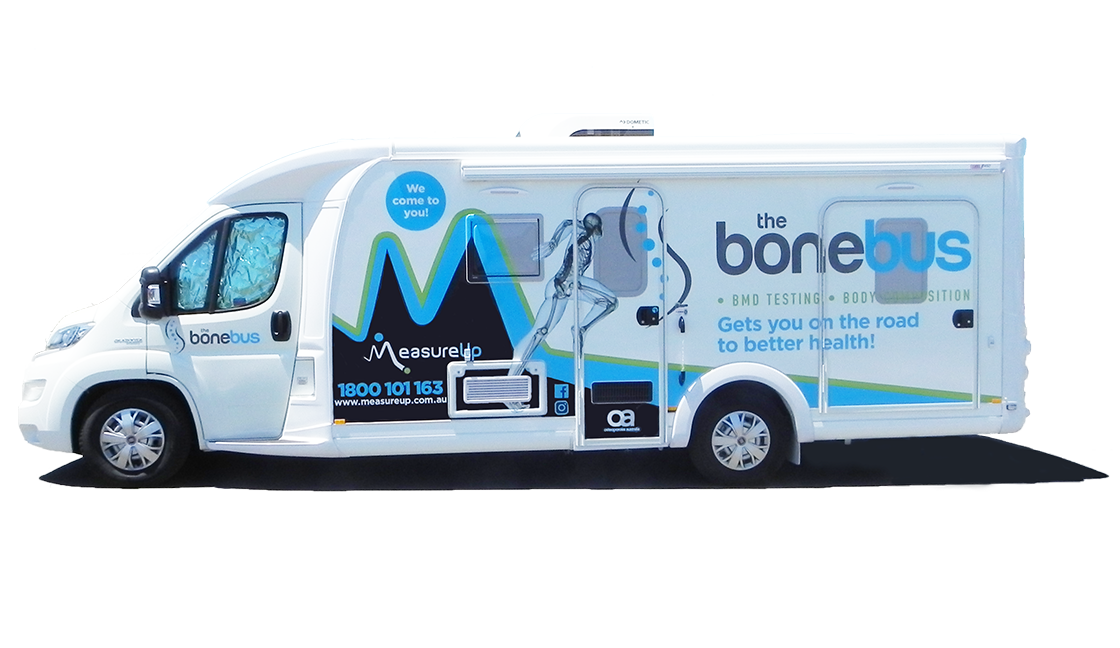 Bonebus entry side